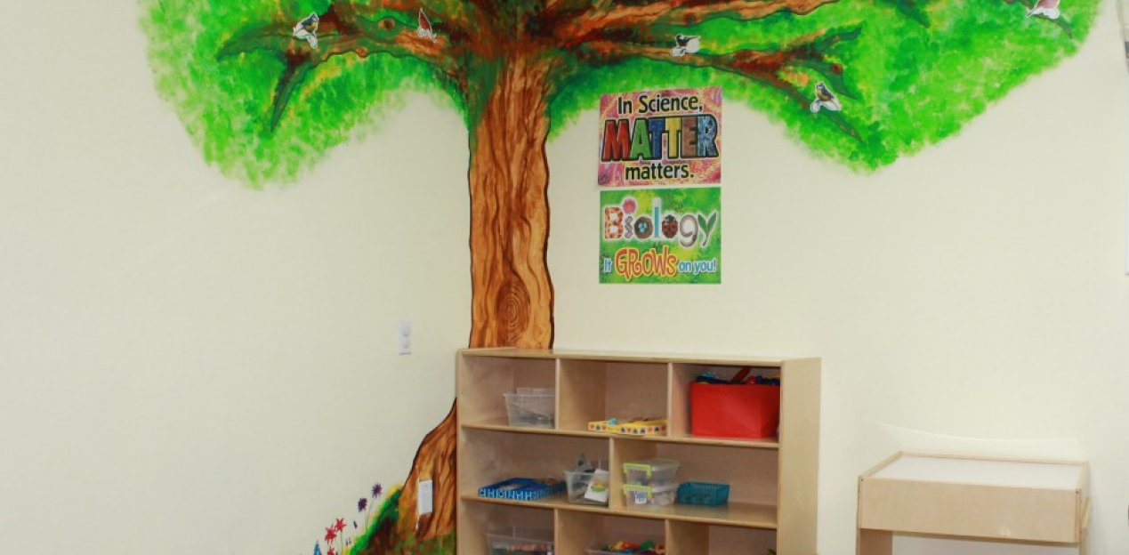 painted tree on a wall with a bookshelf underneath it